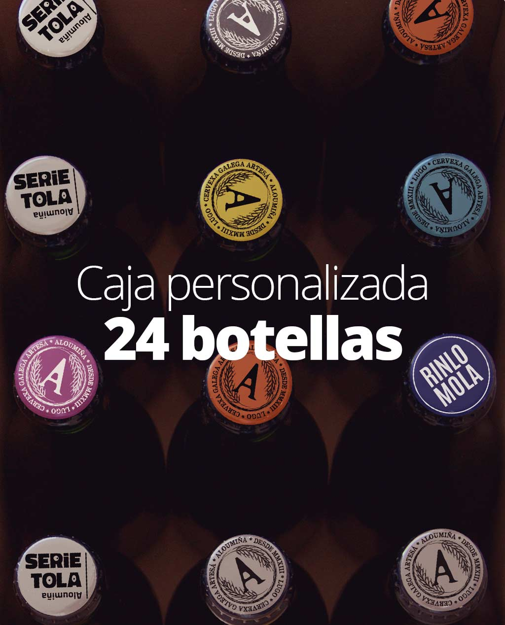 aloumina-cerveza-artesana-craft-beer-lugo-galicia-serietola-caja-personalizada-24-botellas-1024